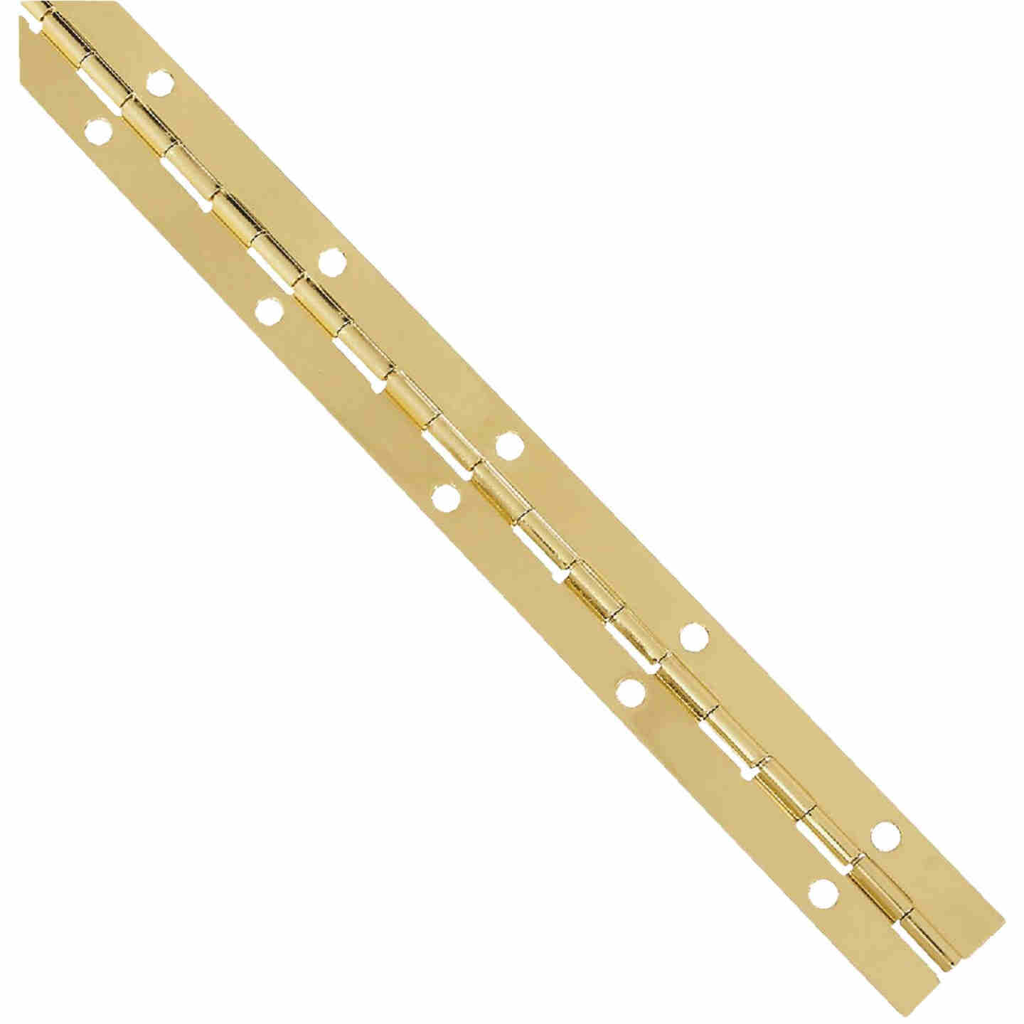National Steel 1-1/16 In. x 12 In. Bright Brass Continuous Hinge Image 1